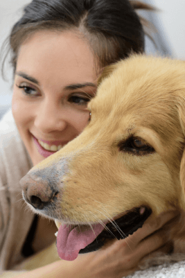 ACM30417 Certificate III in Companion Animal Services TMG College Australia
