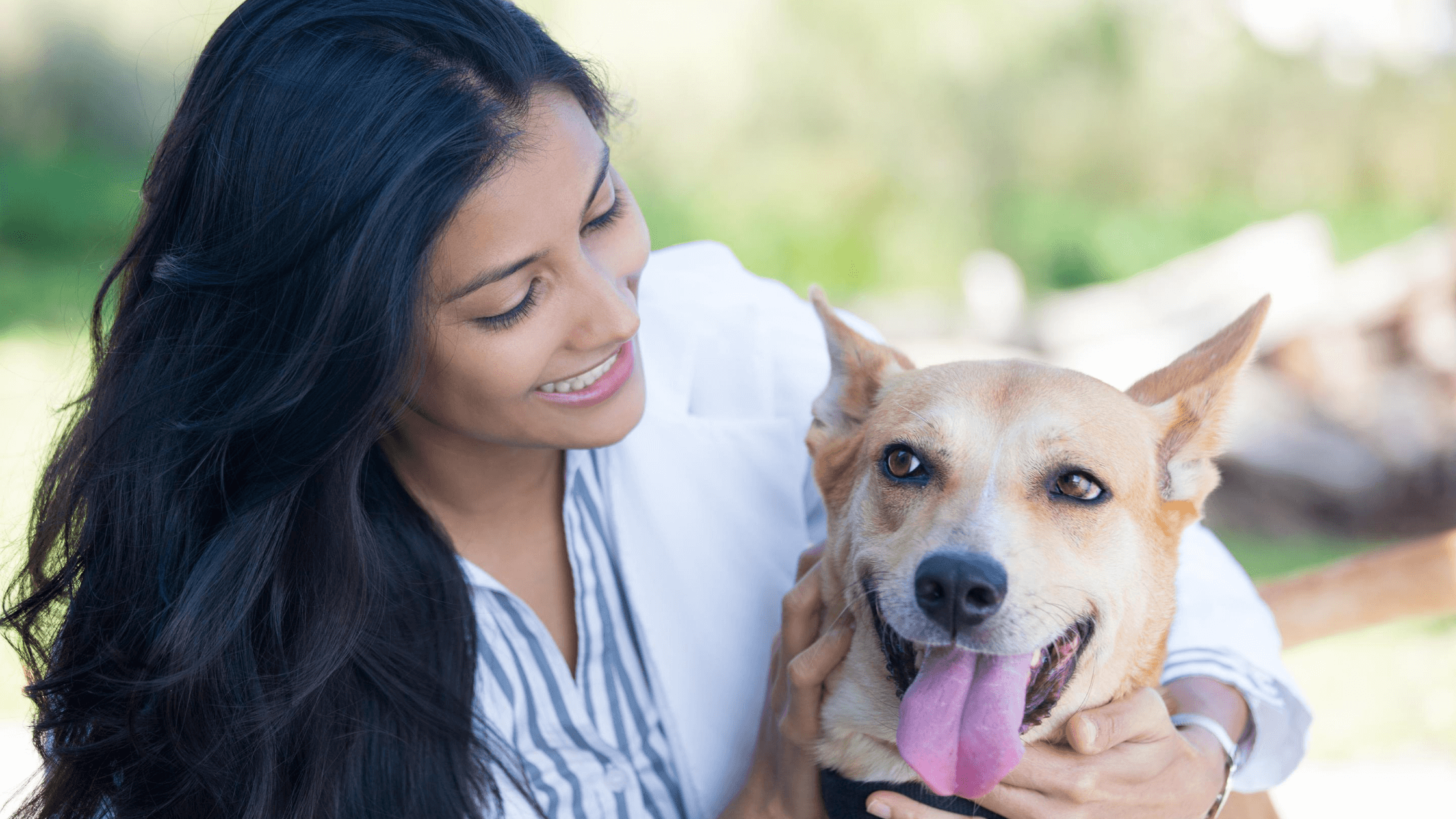 Companion Animal Services Course Melbourne